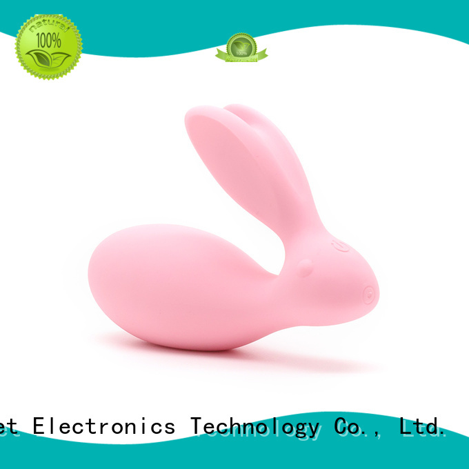 cute vibrator egg inquire now for wife