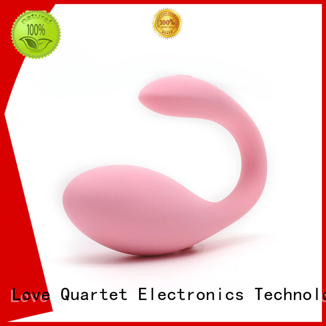 KISS TOY wearable double egg vibrator inquire now for intimacy